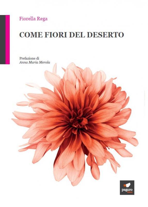 Casa Editrice Edizioni Paguro - 089821723 Vuoi pubblicare il tuo libro Pubblica il tuo libro  cortina nottetempo bulgarini casa il